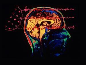 fleeting-thought-brain